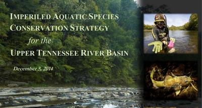 Upper TN River Aquatic Species