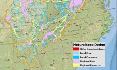 Appalachian Naturescape