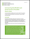 Conserving the World's Last Great Forest Is Possible: Here's How