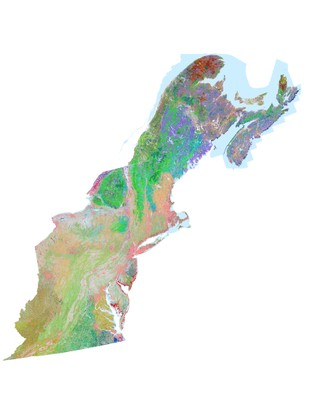 Terrestrial Habitat Map for the Northeast US and Atlantic Canada