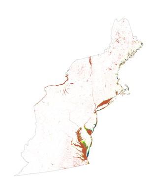 Landscape Capability for American Black Duck, Non-Breeding, Version 3.1, Northeast U.S.