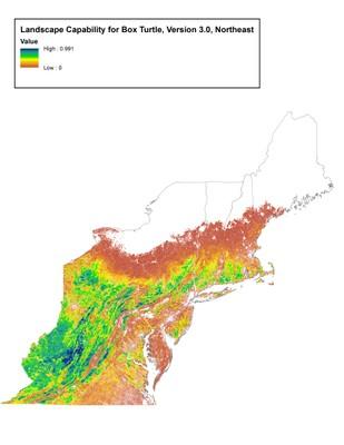 Landscape Capability for Box Turtle, Version 3.0, Northeast