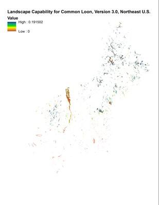 Landscape Capability for Common Loon, Version 3.0, Northeast U.S.
