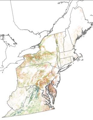 Landscape Capability for Eastern Meadowlark, Version 2.0, Northeast