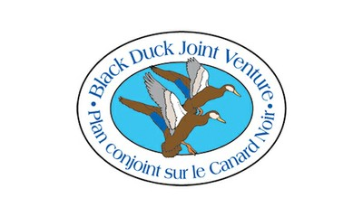 Black Duck Joint Venture