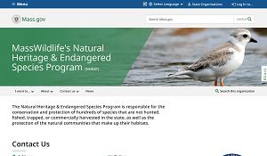 MassWildlife's Natural Heritage & Endangered Species Program