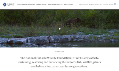 National Fish and Wildlife Foundation (NFWF)