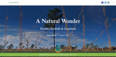 A Natural Treasure: Florida's Sandhills & Grasslands