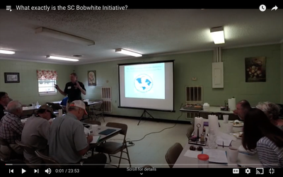 What exactly is the SC Bobwhite Initiative?