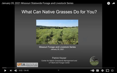 January 20, 2021 Missouri Statewide Forage and Livestock Series