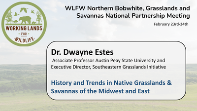 History and Trends in Native Grasslands & Savannas of the Midwest and East