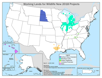 WLFW New 2018 Projects Map
