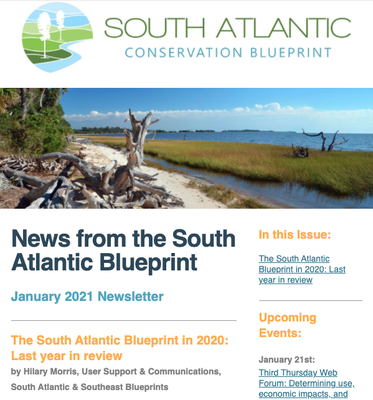 News from the South Atlantic Blueprint January 2021 Newsletter