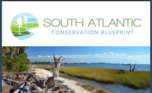News from the South Atlantic Blueprint: June 2021 Newsletter