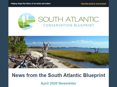 South Atlantic Blueprint April 2020 Newsletter