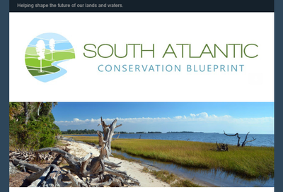 South Atlantic Blueprint February 2019 newsletter