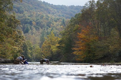 Conserving imperiled species in the Upper Tennessee River Basin