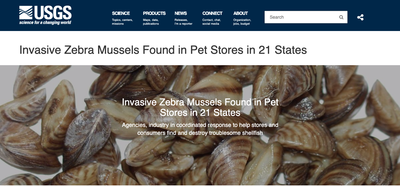 Invasive Zebra Mussels Found in Pet Stores in 21 States