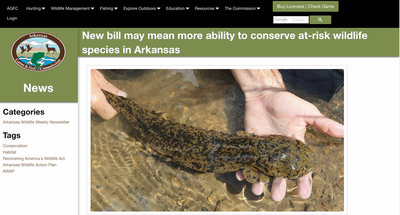 New bill may mean more ability to conserve at-risk wildlife species in Arkansas