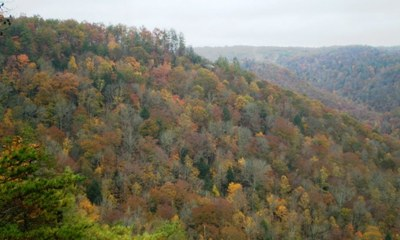 Secretary Jewell Announces Decision to Protect 75,000 Acres of Eastern Tennessee Mountains From Future Surface Mining