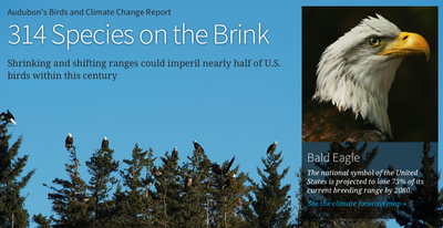 The Audubon Climate Change Report at a Glance