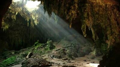 Fern Cave National Wildlife Refuge