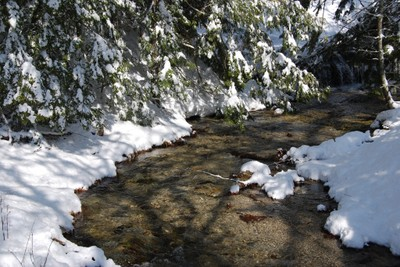 Northeast Cold Water Fish Habitat Vulnerability Assessment