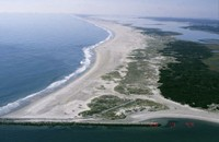 Sea-Level Rise Impacts on Piping Plovers at Assateague Island, Virginia and Maryland
