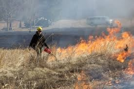 Introduction to Southeastern Prescribed Fire